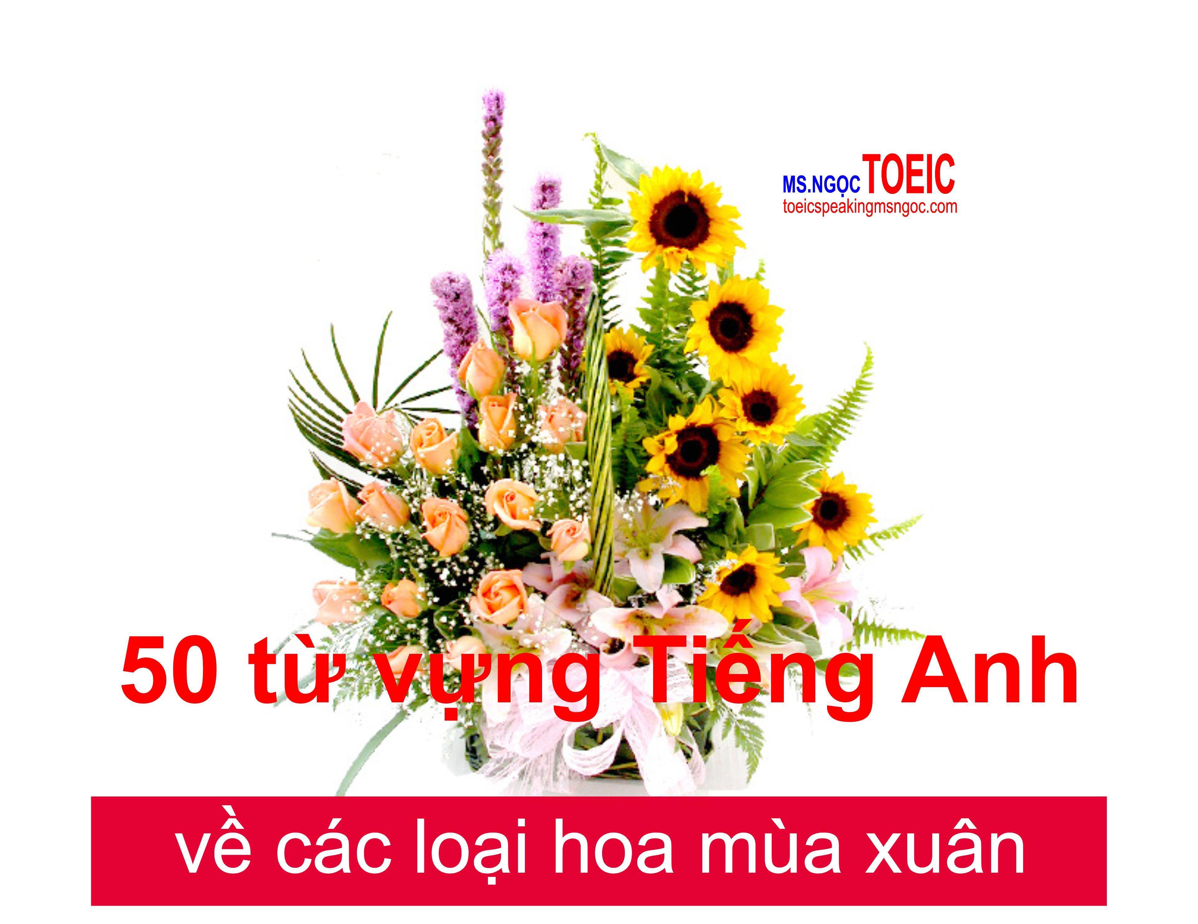 top-50-tu-vung-tieng-anh-ve-cac-loai-hoa-pho-bien-nhat-187